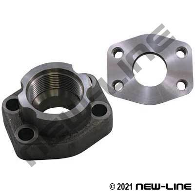 Female NPT x C61 Companion Flat Face Flange