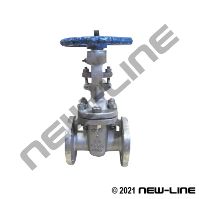 Stainless Steel Flanged 150# Gate Valve